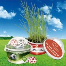 pflanzodrom-fussball