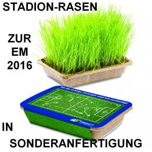 Stadion-Rasen in Sonderanfertigung zur EM 2016, WM-Werbeartikel in Sonderform